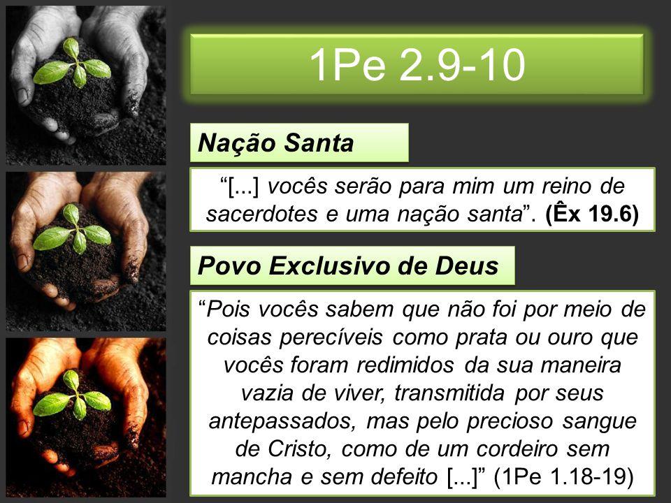 1Pe 2.9-10 Nação Santa Povo Exclusivo de Deus
