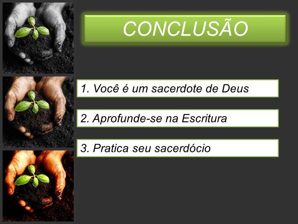 CONCLUSÃO 1. Você é um sacerdote de Deus 2. Aprofunde-se na Escritura
