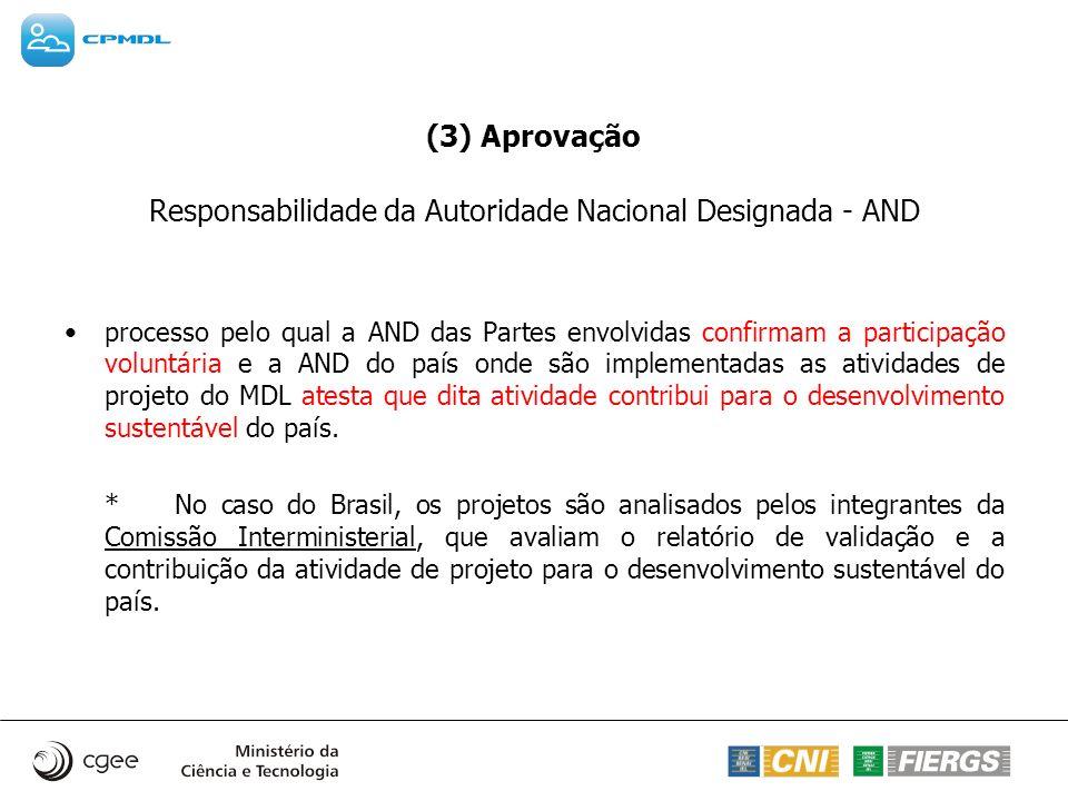 Responsabilidade da Autoridade Nacional Designada - AND