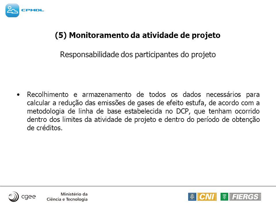 (5) Monitoramento da atividade de projeto