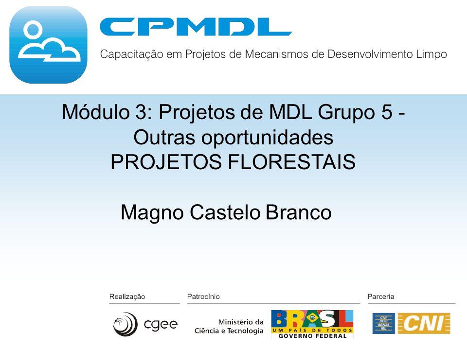 Módulo 3: Projetos de MDL Grupo 5 - Outras oportunidades PROJETOS FLORESTAIS