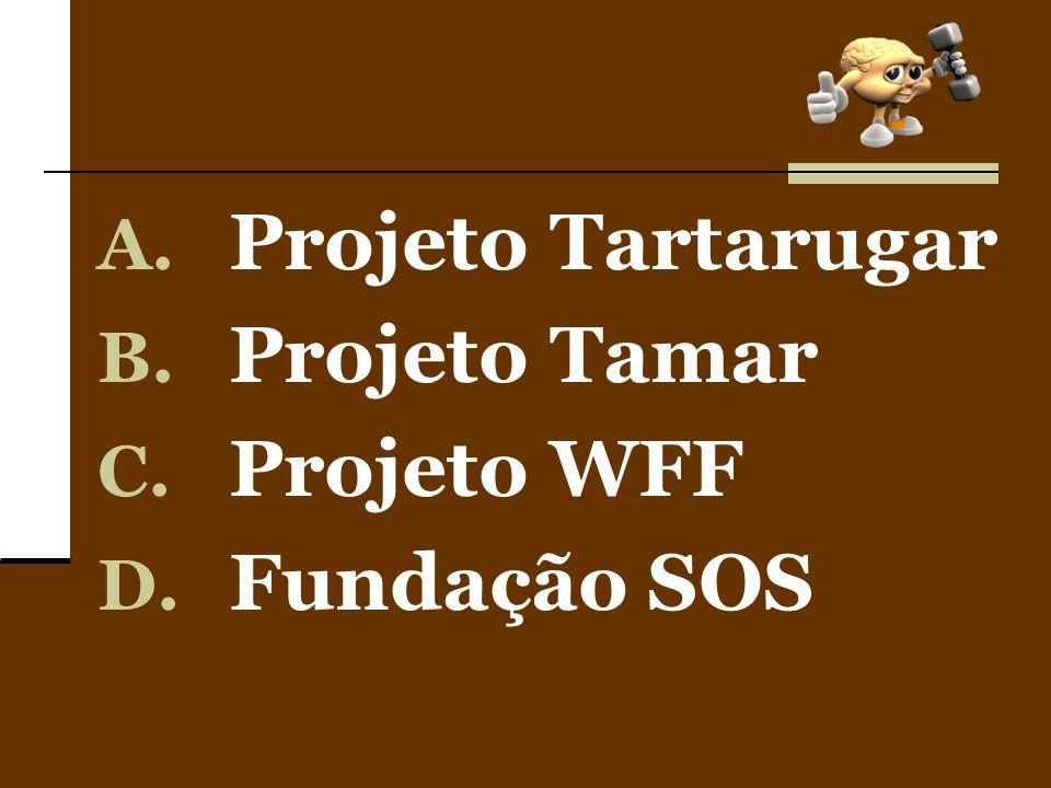 Projeto Tartarugar Projeto Tamar Projeto WFF Fundação SOS