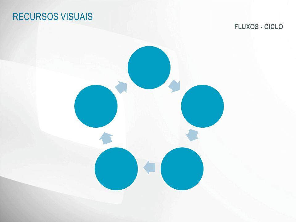 RECURSOS VISUAIS FLUXOS - CICLO