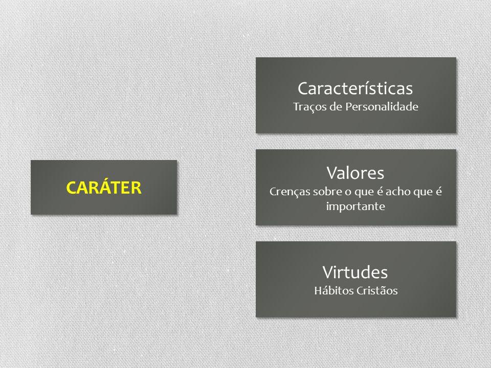 Características Valores CARÁTER Virtudes Traços de Personalidade