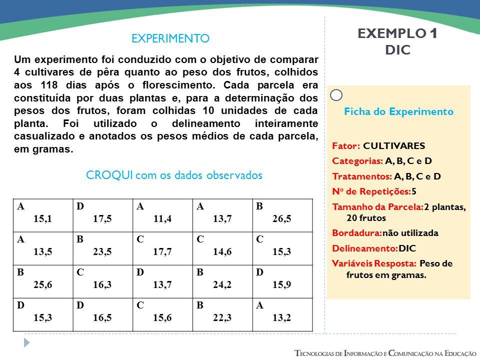 EXEMPLO 1 DIC EXPERIMENTO CROQUI com os dados observados