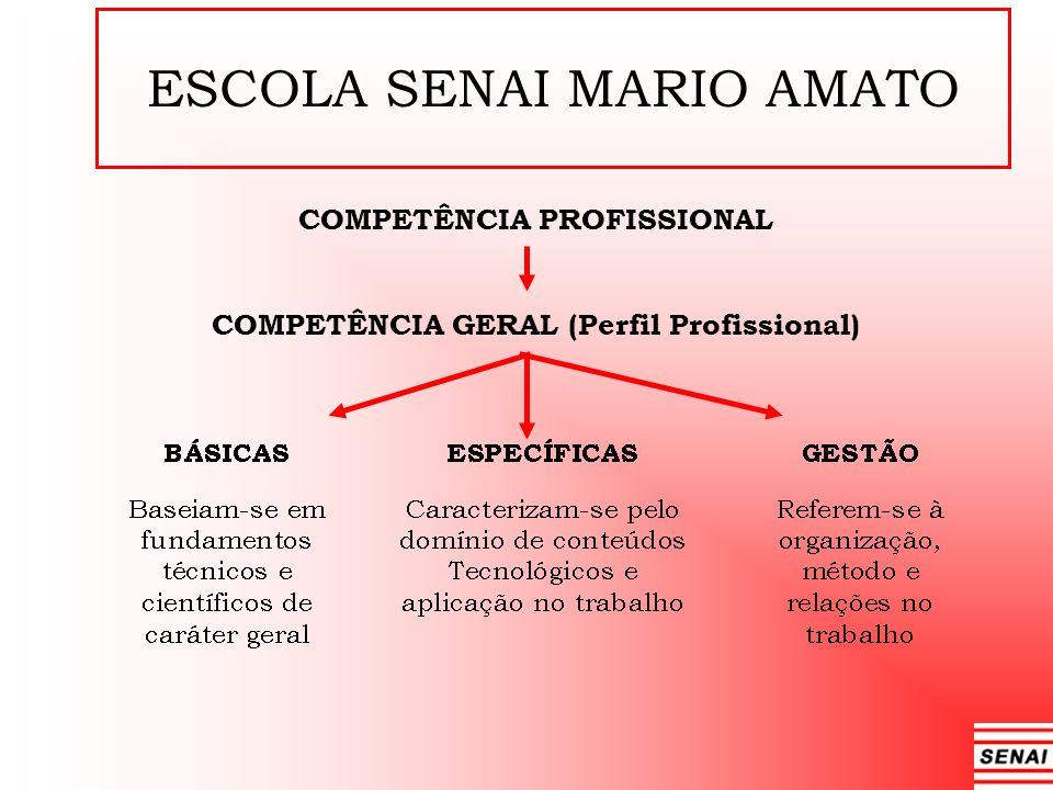 COMPETÊNCIA PROFISSIONAL COMPETÊNCIA GERAL (Perfil Profissional)