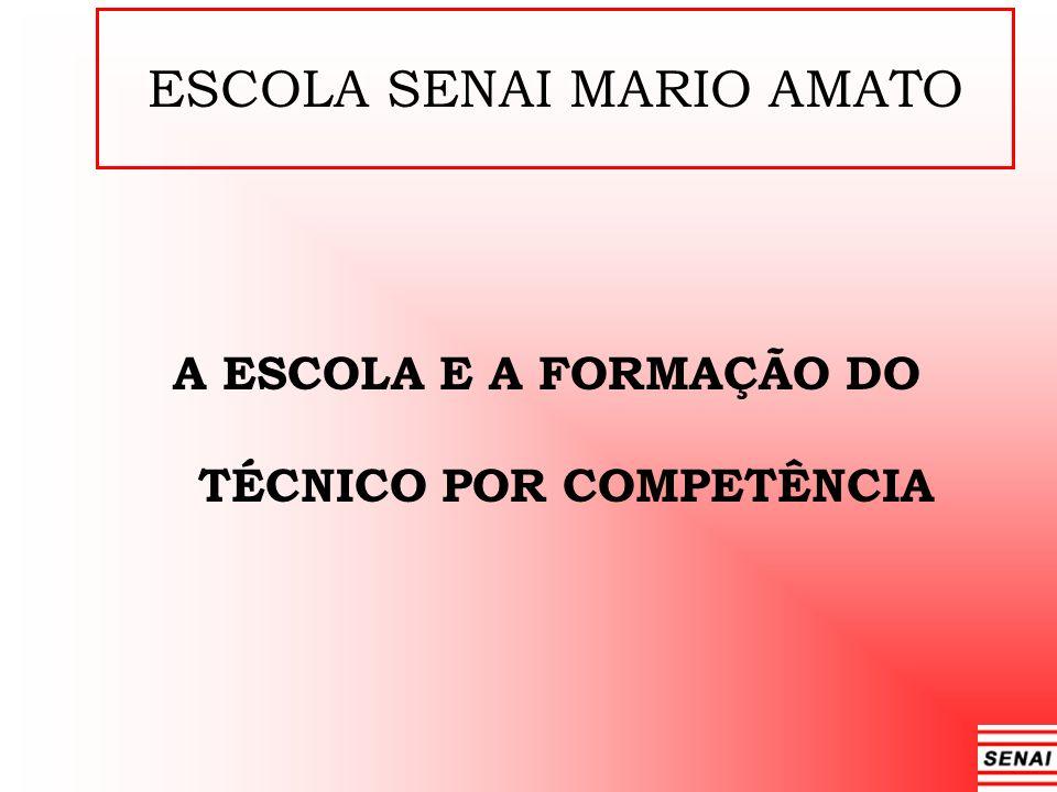 A ESCOLA E A FORMAÇÃO DO TÉCNICO POR COMPETÊNCIA