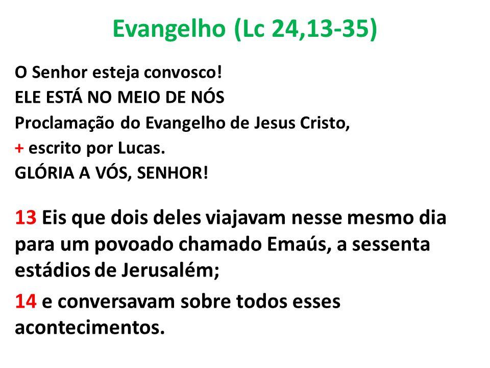 Evangelho (Lc 24,13-35) O Senhor esteja convosco! ELE ESTÁ NO MEIO DE NÓS. Proclamação do Evangelho de Jesus Cristo,
