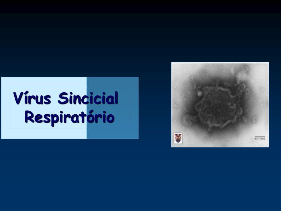 Vírus Sincicial Respiratório