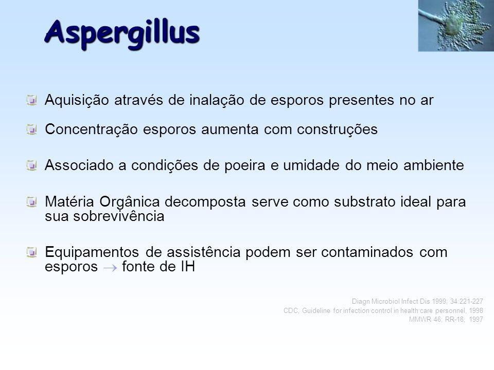 Aspergillus Aquisição através de inalação de esporos presentes no ar