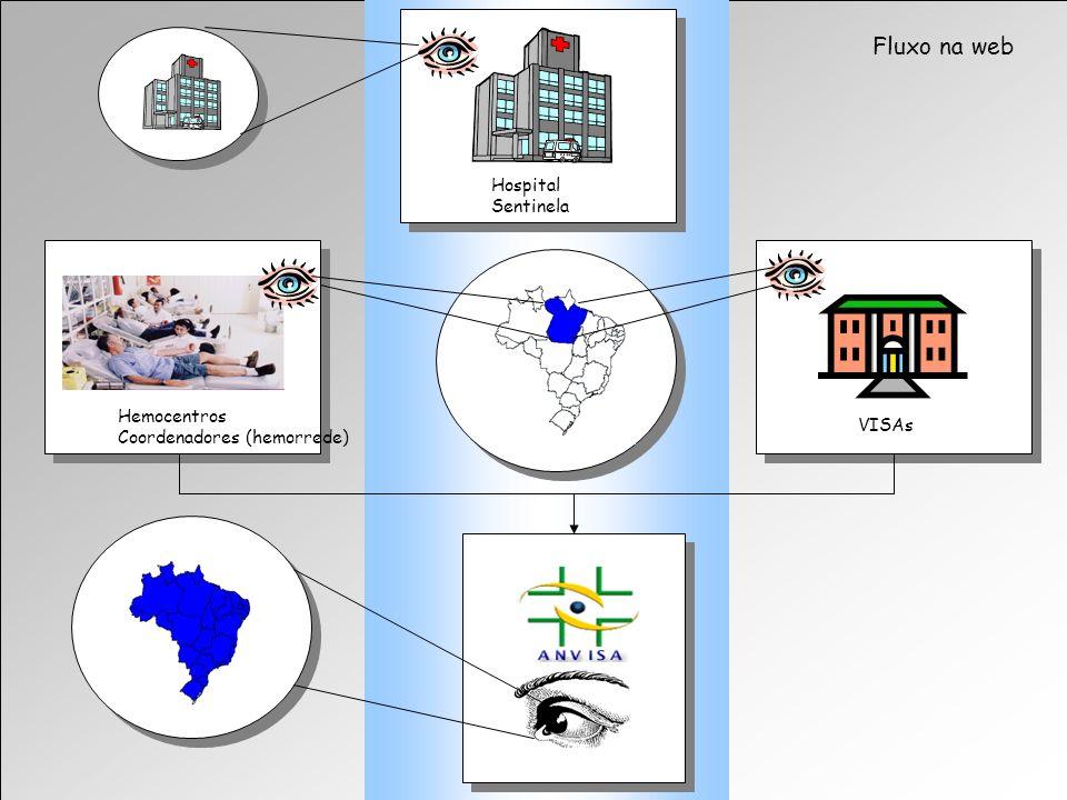 Fluxo na web Hospital Sentinela Hemocentros Coordenadores (hemorrede)