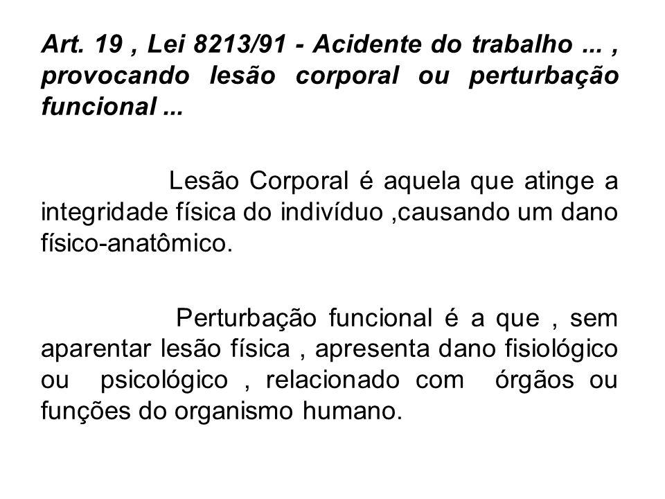 Art. 19 , Lei 8213/91 - Acidente do trabalho