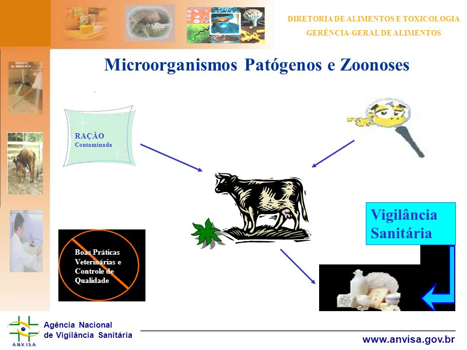 Microorganismos Patógenos e Zoonoses