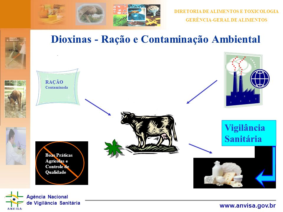 Dioxinas - Ração e Contaminação Ambiental