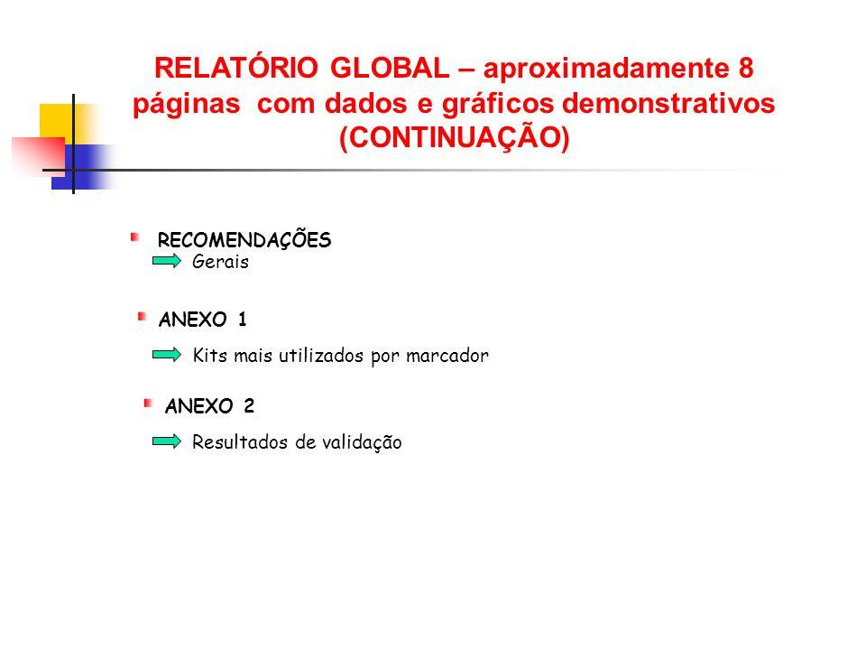 RELATÓRIO GLOBAL – aproximadamente 8 páginas com dados e gráficos demonstrativos