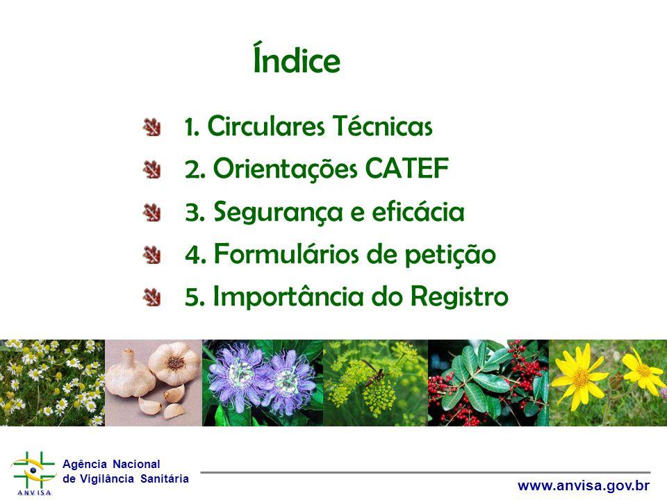Índice 1. Circulares Técnicas 2. Orientações CATEF