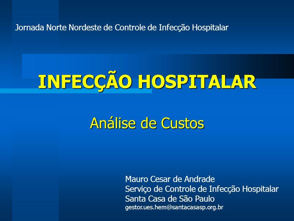 INFECÇÃO HOSPITALAR Análise de Custos