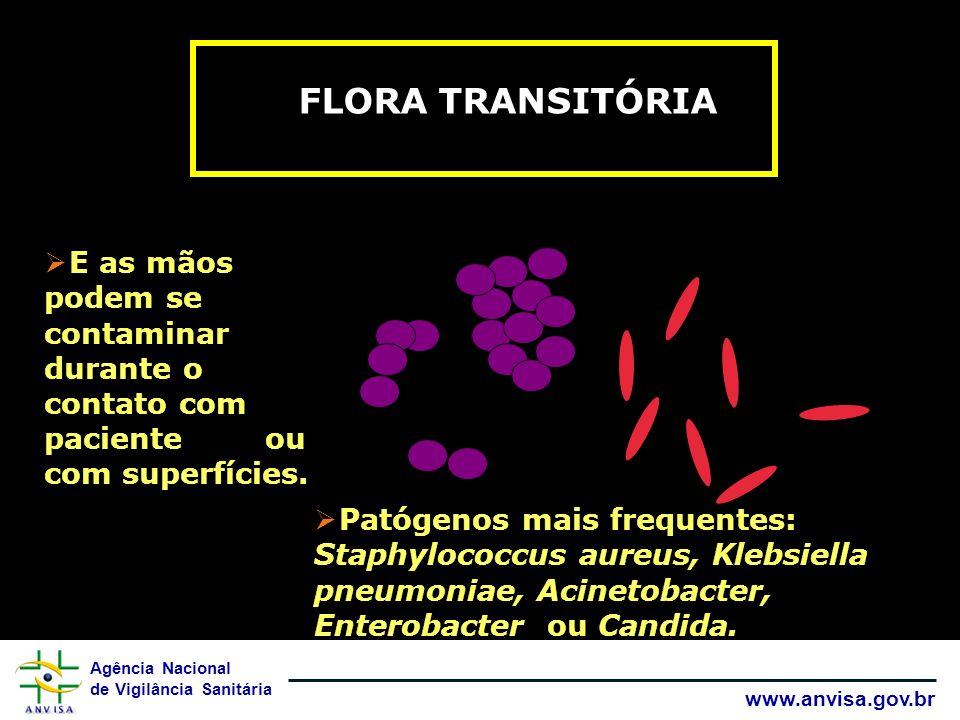 FLORA TRANSITÓRIA E as mãos podem se contaminar durante o contato com paciente ou com superfícies.