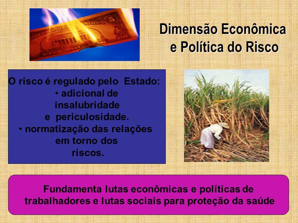 Dimensão Econômica e Política do Risco