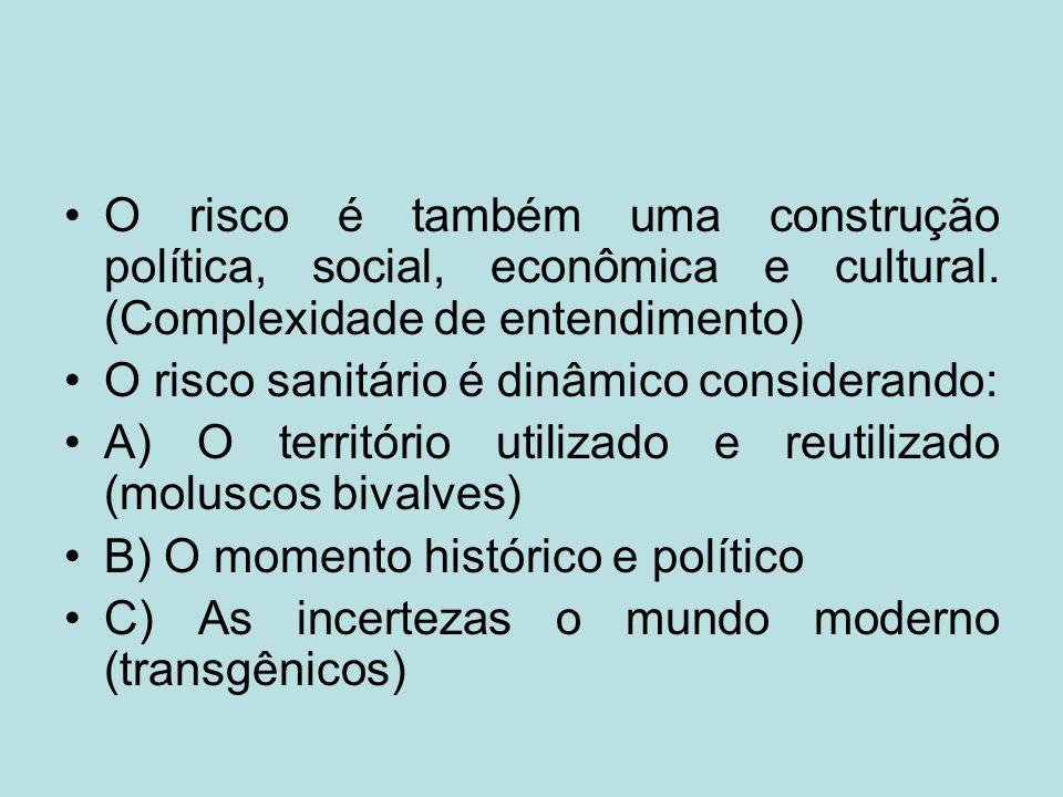 O risco é também uma construção política, social, econômica e cultural
