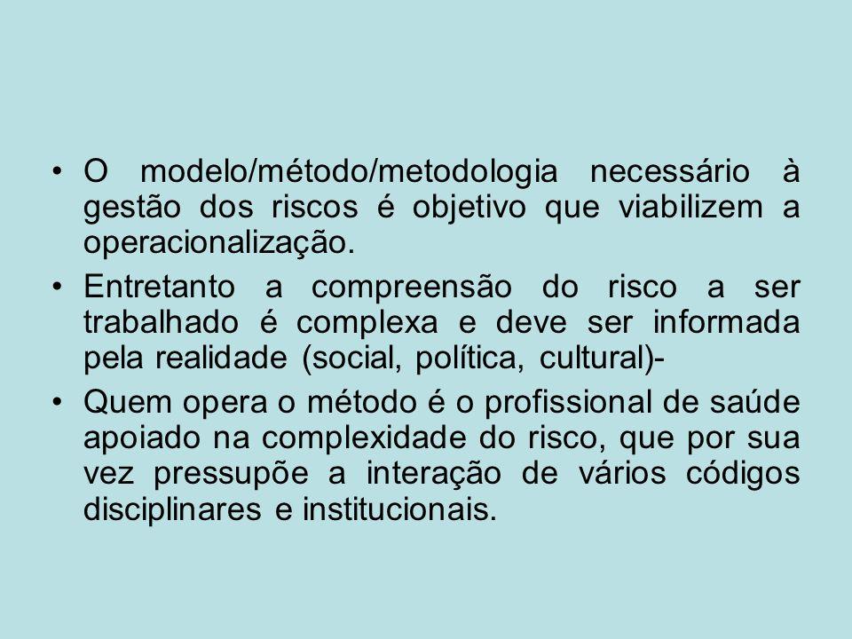 O modelo/método/metodologia necessário à gestão dos riscos é objetivo que viabilizem a operacionalização.