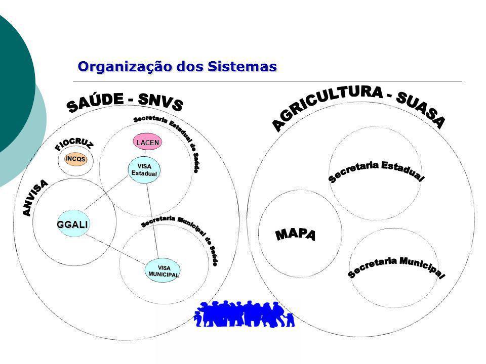 Organização dos Sistemas