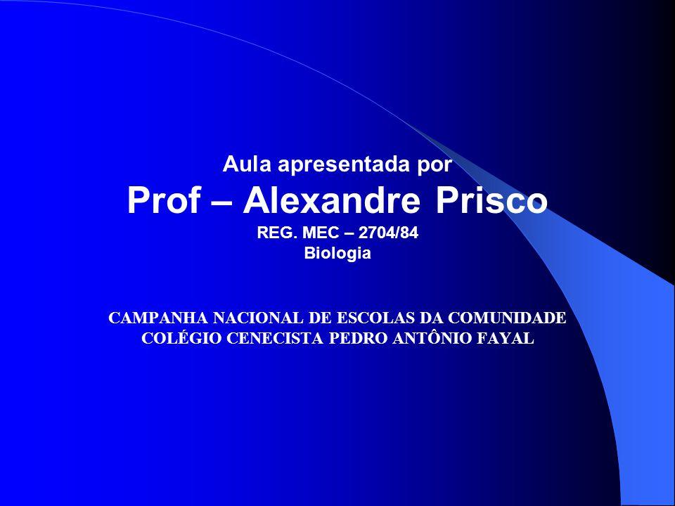 Prof – Alexandre Prisco