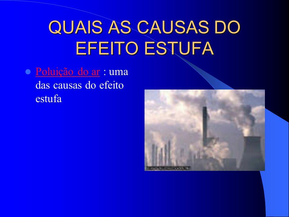QUAIS AS CAUSAS DO EFEITO ESTUFA