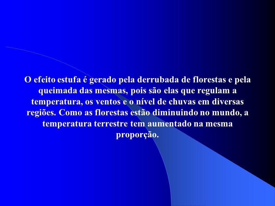 O efeito estufa é gerado pela derrubada de florestas e pela queimada das mesmas, pois são elas que regulam a temperatura, os ventos e o nível de chuvas em diversas regiões.