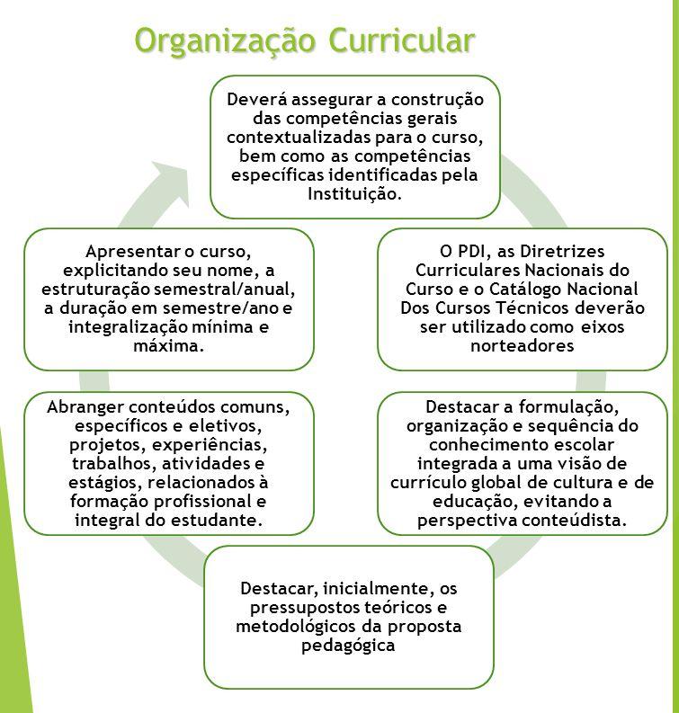 Organização Curricular
