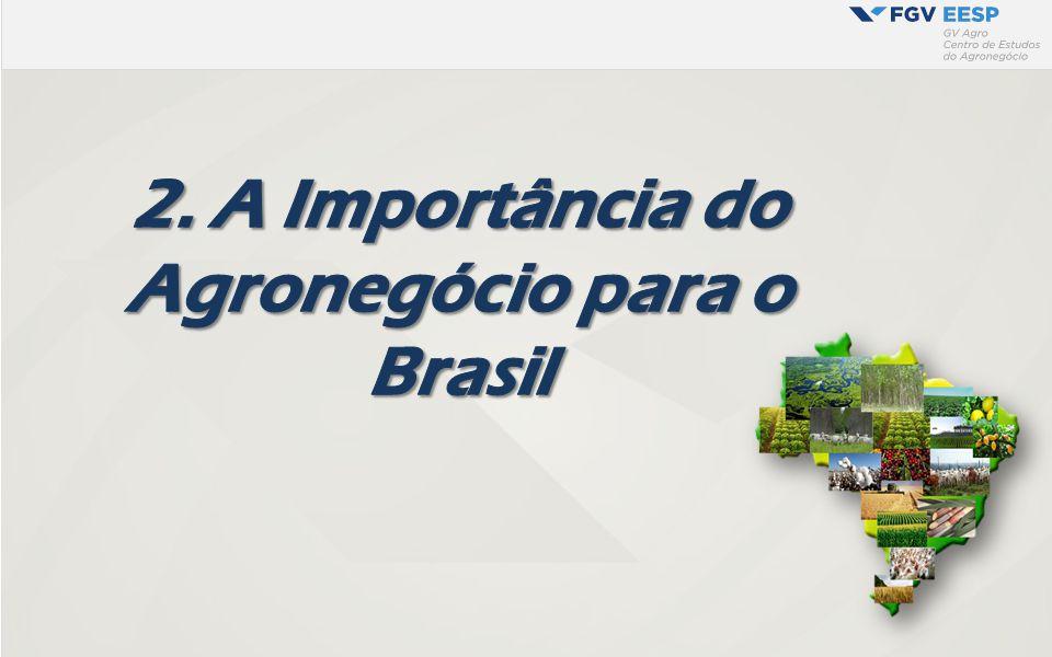 A Importância do Agronegócio para o Brasil