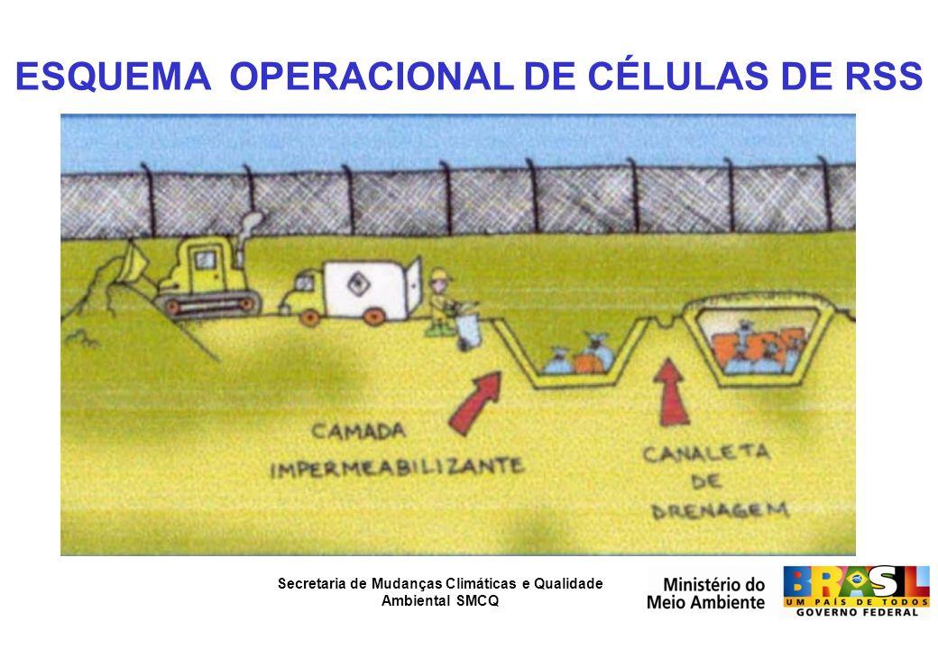 ESQUEMA OPERACIONAL DE CÉLULAS DE RSS