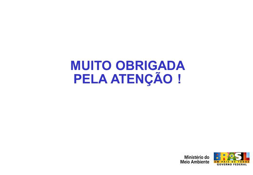 MUITO OBRIGADA PELA ATENÇÃO !