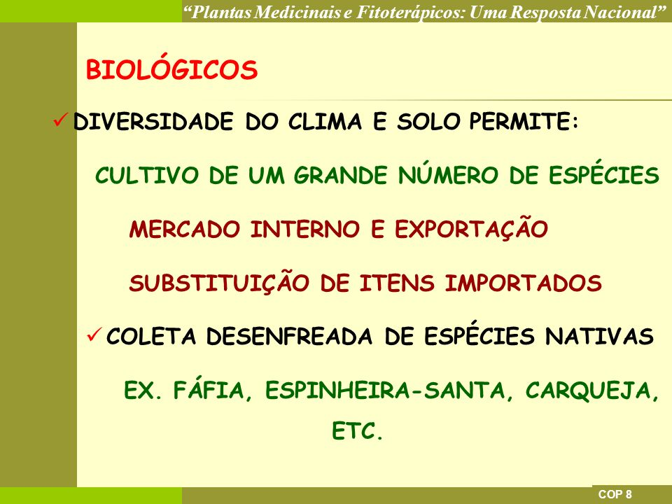 EX. FÁFIA, ESPINHEIRA-SANTA, CARQUEJA, ETC.