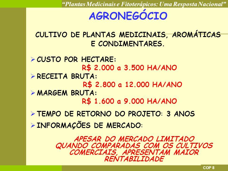 AGRONEGÓCIO CULTIVO DE PLANTAS MEDICINAIS, AROMÁTICAS E CONDIMENTARES.