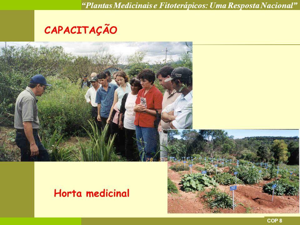 CAPACITAÇÃO Horta medicinal COP 8