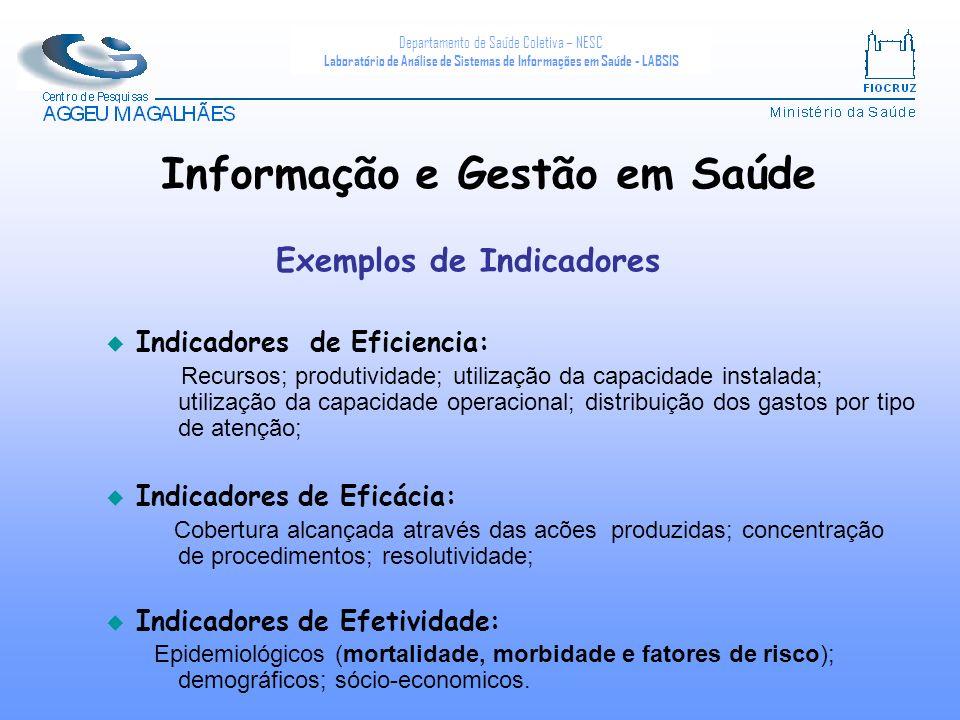 Informação e Gestão em Saúde Exemplos de Indicadores