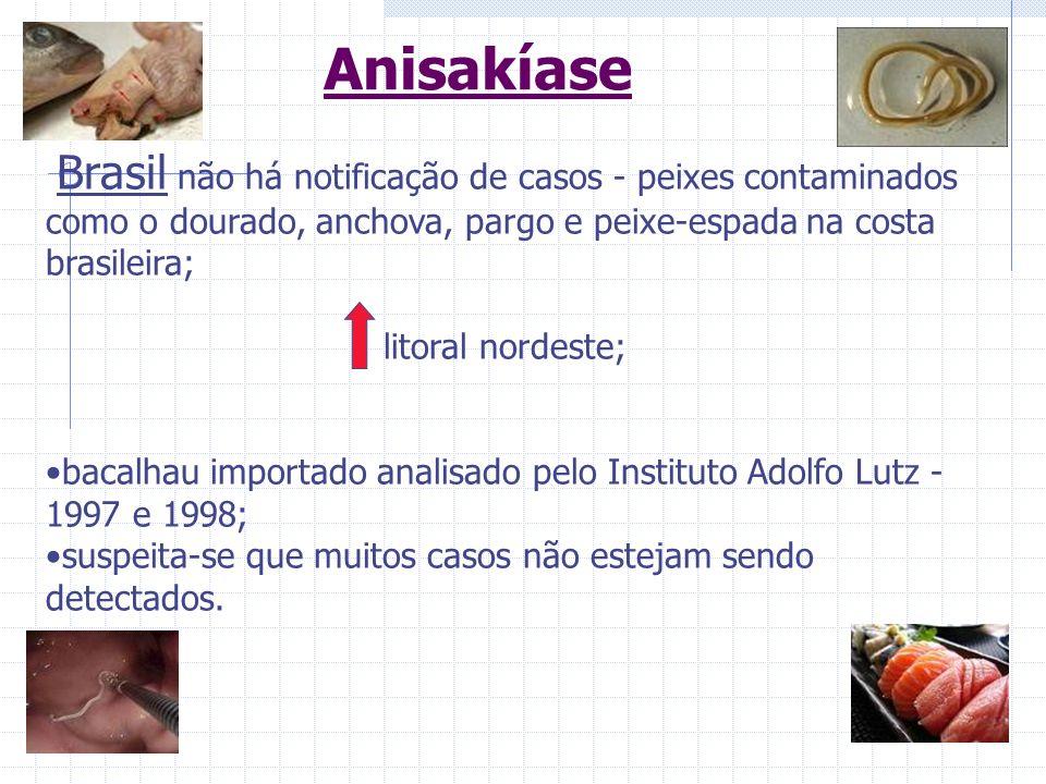 Anisakíase Brasil não há notificação de casos - peixes contaminados como o dourado, anchova, pargo e peixe-espada na costa brasileira;