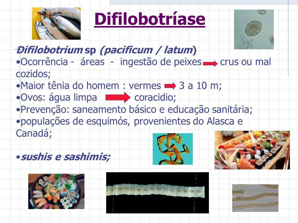 Difilobotríase Difilobotrium sp (pacificum / latum)