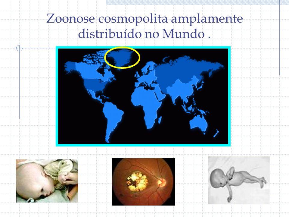 Zoonose cosmopolita amplamente distribuído no Mundo .