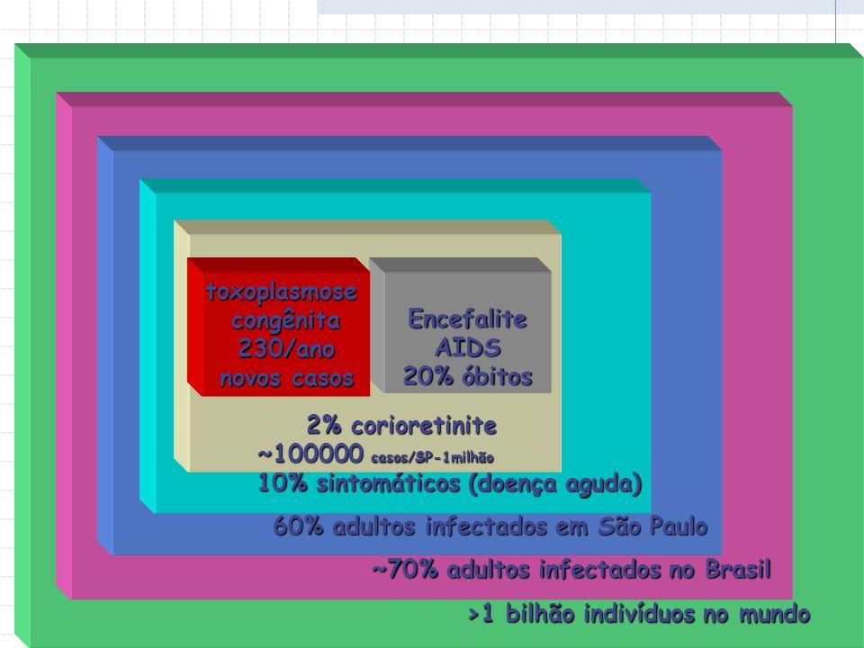 >1 bilhão indivíduos no mundo ~70% adultos infectados no Brasil