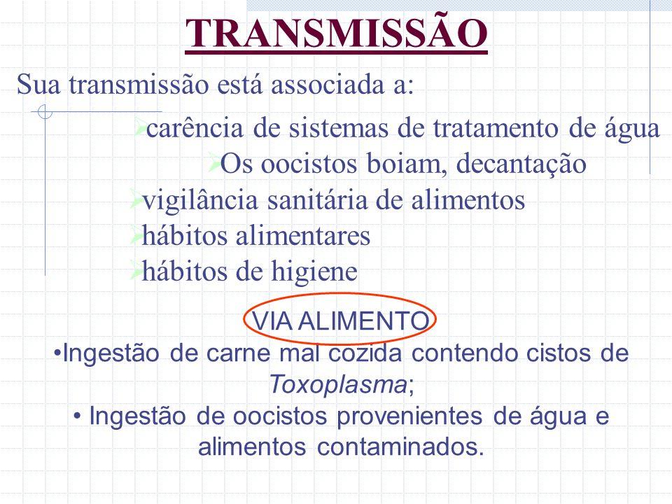 TRANSMISSÃO Sua transmissão está associada a: