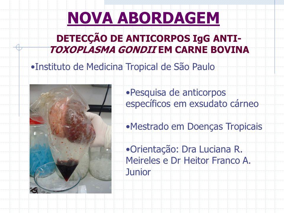 DETECÇÃO DE ANTICORPOS IgG ANTI-TOXOPLASMA GONDII EM CARNE BOVINA