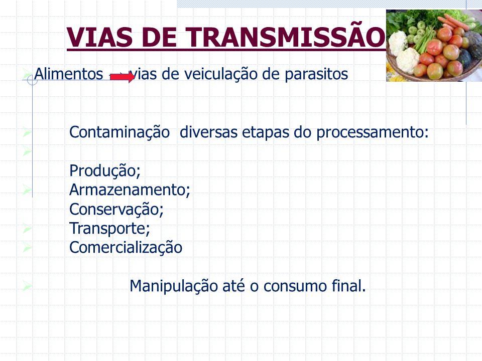VIAS DE TRANSMISSÃO Alimentos → vias de veiculação de parasitos