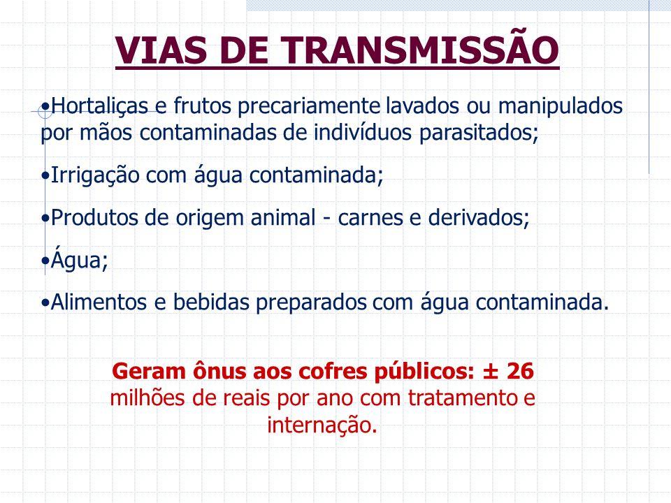 VIAS DE TRANSMISSÃO Hortaliças e frutos precariamente lavados ou manipulados por mãos contaminadas de indivíduos parasitados;