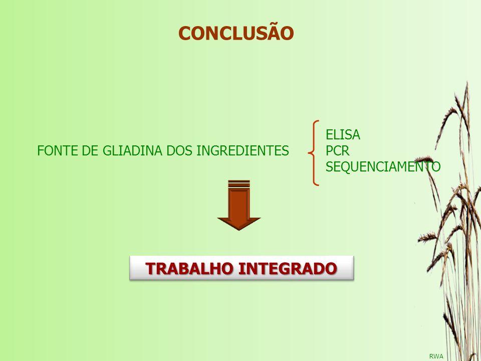 CONCLUSÃO TRABALHO INTEGRADO ELISA