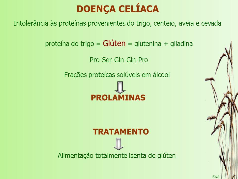 proteína do trigo = Glúten = glutenina + gliadina