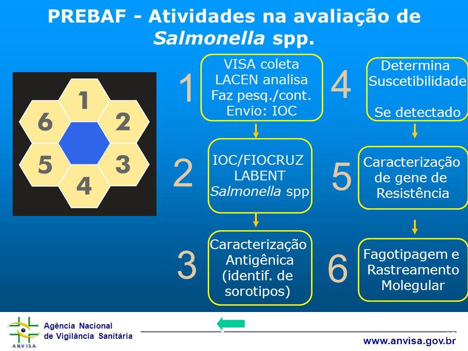 PREBAF - Atividades na avaliação de Salmonella spp.