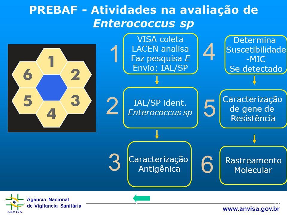 PREBAF - Atividades na avaliação de Enterococcus sp