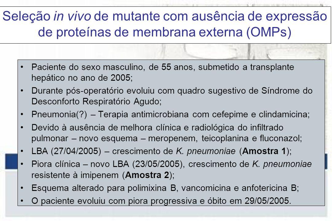 Seleção in vivo de mutante com ausência de expressão de proteínas de membrana externa (OMPs)